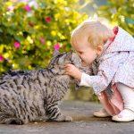 Что нужно знать об аллергии на животных?