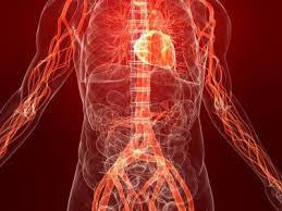От чего болит сердце: пять факторов риска сердечно-сосудистых заболеваний