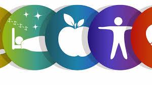 5 принципов здорового образа жизни
