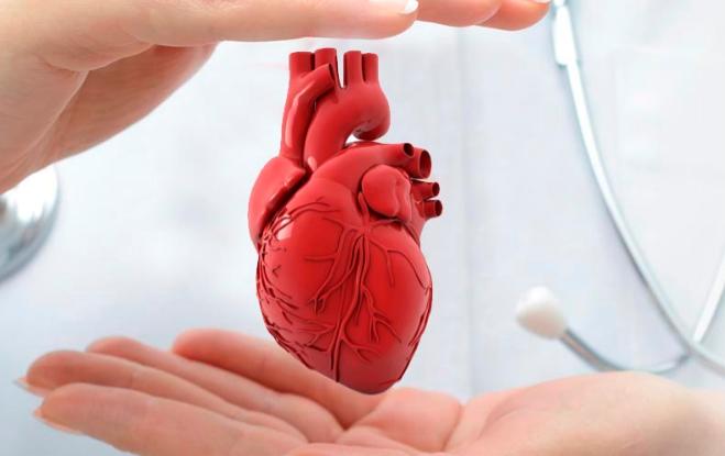 Кардиологи из Кореи проведут операции на сердце хабаровским детям