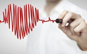 Как уберечь свое сердце от опасных заболеваний. Советы главного кардиолога Кубани