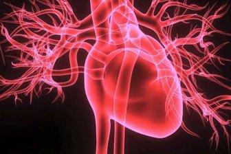 Нейронная сеть провела первую операцию на сердце