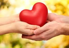 Болезни сердца: мифы и реальность