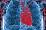 Ученые: Зимой у переживших инфаркт миокарда возрастает риск сердечного приступа