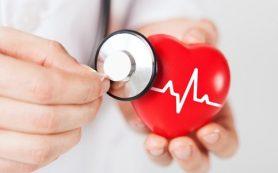 «Сердце в пробирке» поможет в разработке лекарств