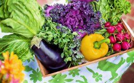 Ученые выяснили, почему овощи и рыба полезны для сердца