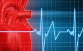 Здоровье: Распространенные заболевания сердечно-сосудистой системы