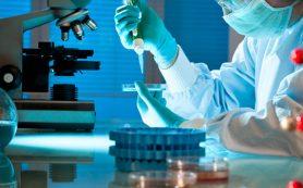 PRP-терапия в ортопедии: как проходит и кому подходит данная процедура