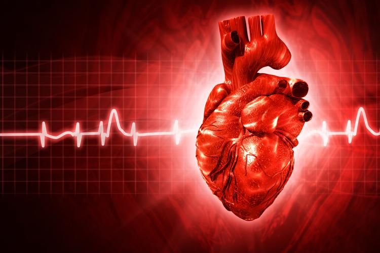 Воспалительные заболевания сердца в пожилом возрасте