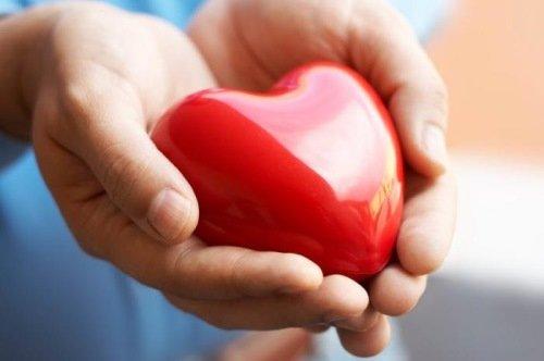 Врачи могут выявлять болезни сердца с помощью смартфона