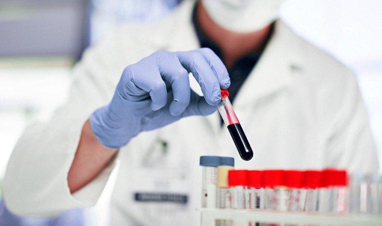 Гемостазиолог – кто это, и когда к нему нужно обратиться?