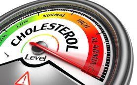 Холестерин не виноват! О чем молчали американские ученые