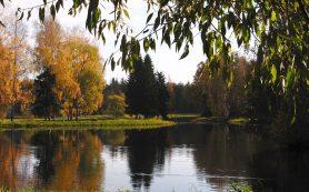 Пригороды Петербурга: Пушкин