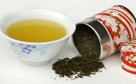 Онлайн-магазин ДАЧА: элитный китайский чай по невысокой цене