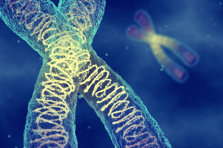 Самая дорогая генная терапия в мире обойдется в 2 миллиона долларов за процедуру