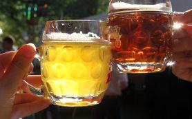 Полезно ли пить пиво