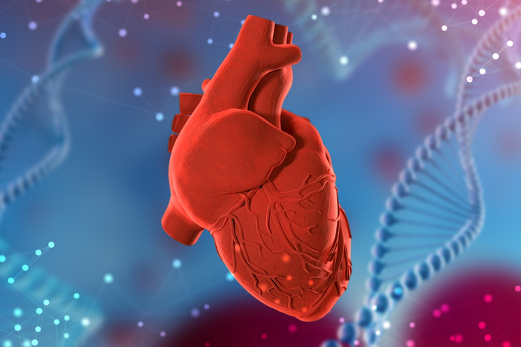 Генетическая бессонница провоцирует болезни сердца