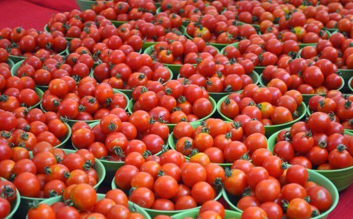 Этот повседневный овощ полезен для сердца и костей
