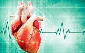 Синусовая аритмия сердца