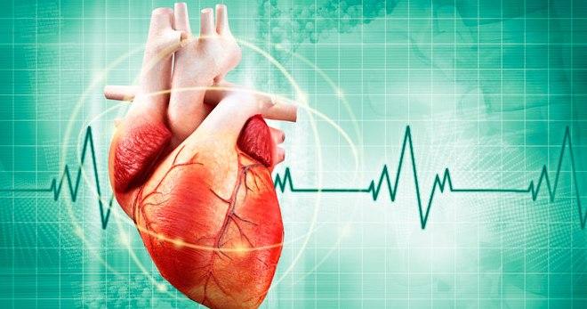 Как восстановить поврежденные ткани сердца?