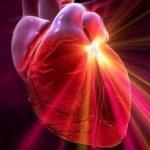 5 причин для заботы о сердце