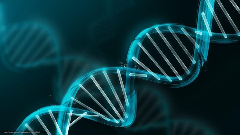 Как ваши мысли меняют ваш мозг, клетки и гены