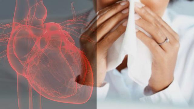 Берегите сердце: коронавирус может вредить не только легким