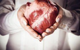 Сердцебиения