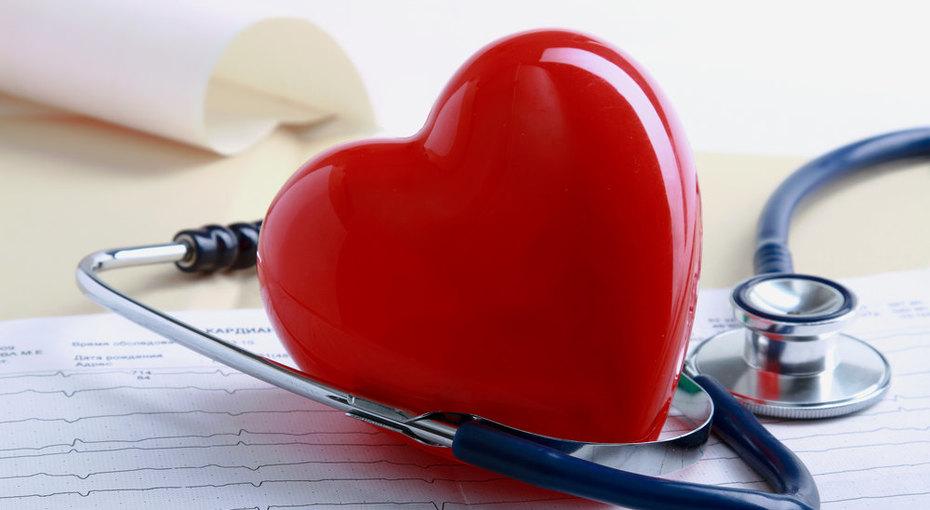 Сердечно-сосудистая система: строение и функции