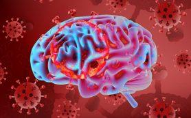 Коронавирус, инсульт и Альцгеймер: как определить риск по группе крови?