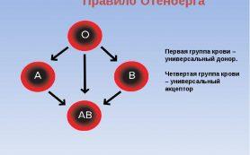 Для чего нужно знать свою группу крови?