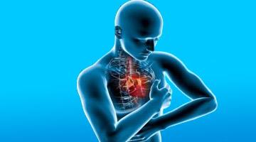 Ученые рассказали, как при помощи питания избежать болезней сердца