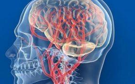 Лекарства для улучшения кровообращения в головном мозге