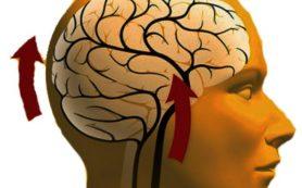 То может вызвать органическое поражение мозга?